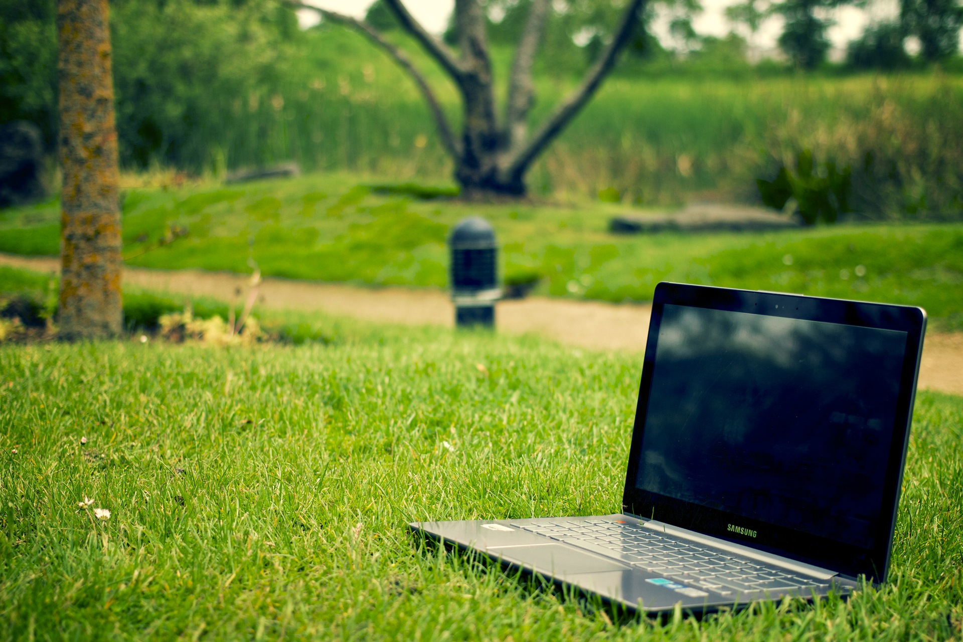 Digital coaching and consultancy laptop-notebook-grass-meadow